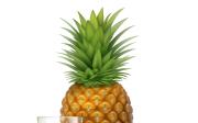 Ananas acukrovka
