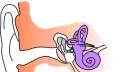 Ruptury ušního bubínku