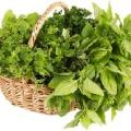 Přírodní zdroje kyseliny listové